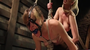 Small boobs Mona Wales blonde haired strapon scene
